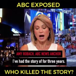 Read more about the article @abcnews EXPOSED!  This is pretty big.  We're talking ABC News… owned by @Disn…