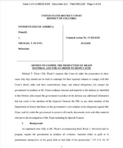 BREAKING: Flynn Files Motion and Motion is GRANTED the gov. Is ORDERED to show c…
