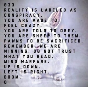 833 – Reality Is Labeled As Conspiracy