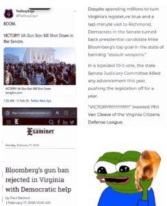 Virginia Gun Ban Bill Shut Down In Senate