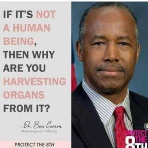 """If they're not human beings then why are you harvesting organs from """"it""""? – @sec…"""