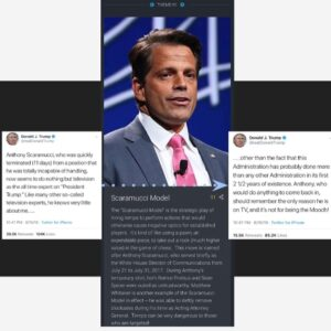 """Q Drop [Global Themes] #91 """"Scaramucci Model""""The """"Scaramucci Model"""" is the str…"""