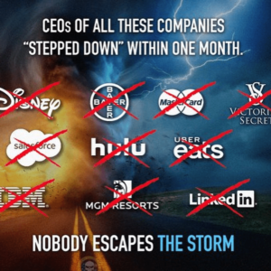 "CEOs OF ALL THESE COMPANIES ""STEPPED DOWN"" WITHIN ONE MONTH;  Disney, Bayer, Master Card, Victoria's Secret, Sales Force, Hulu, Uber Eats, IBM, MGM Resorts, & LinkedIn"