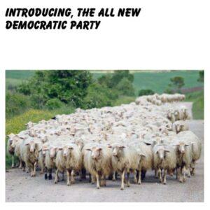 BAAAAH      @thedemocrats #demoncrats #dumocrats #sheep #herd #animals #follower…