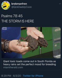 Make It Rain …