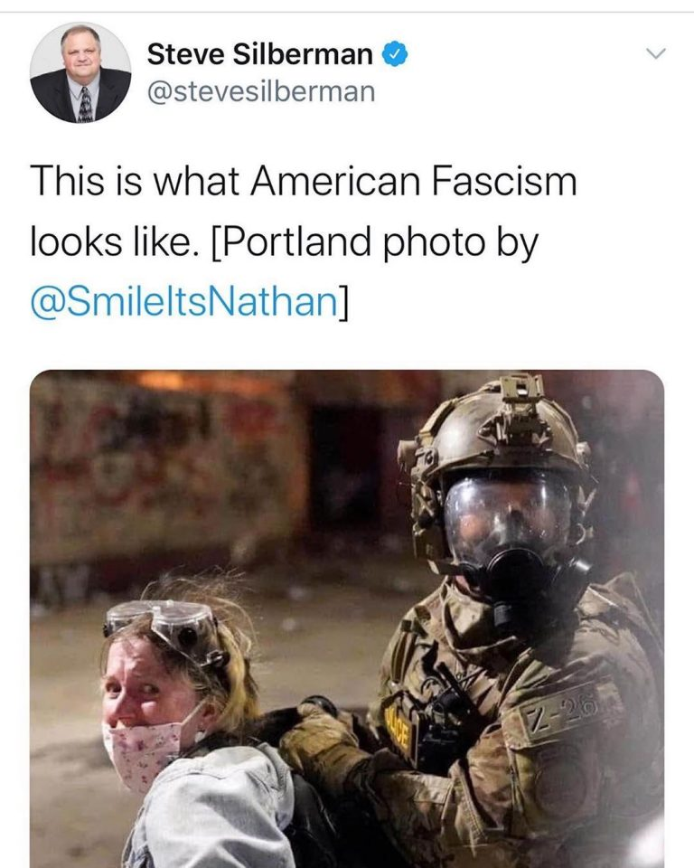 """. 1) Media narrative """"This is what American fascism looks like"""" as a """"mom"""" is fo…"""