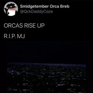 ORCAS RISE UP Via