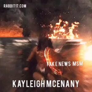 Read more about the article Kayleigh McEnany fights back against  the fake news narrative. STAY STRONG, KAYL