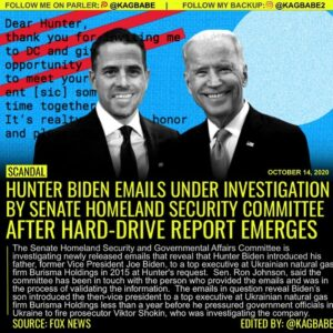 The Senate Homeland Security and Governmental Affairs Committee is investigating