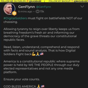 Read more about the article Message from General Flynn