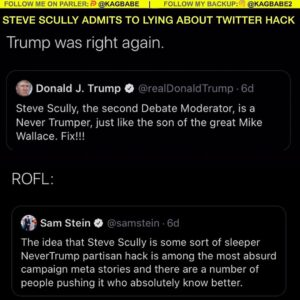 Steve Scully fired after admitting he LIED about being hacked on twitter after c