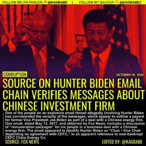 Read more about the article One of the people on an explosive email thread allegedly involving Hunter Biden
