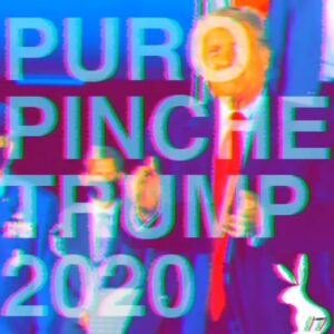 Read more about the article PUROPINCHETRUMP2020