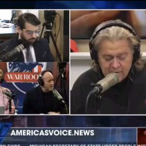 """Steve Bannon on Q: """"An aspect of their argument appears to be correct."""""""