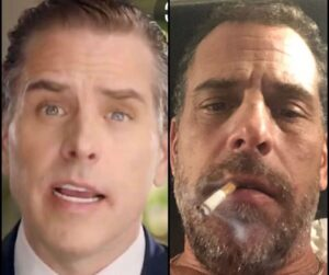 Will the real Hunter Biden please stand up? ================== was suspended a