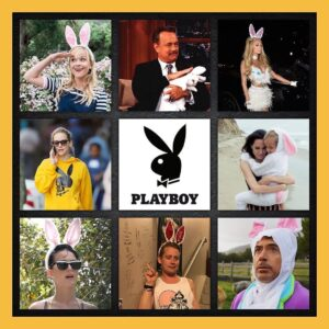 White rabbits and rabbits in h-wood represents not only the handlers or the prog