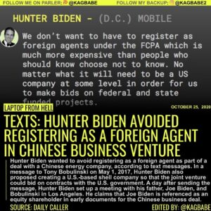 Hunter Biden suggested setting up a shell company to do business with a Chinese