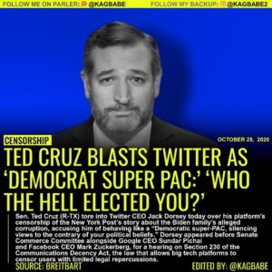 Senator Ted Cruz (R., Texas) slammed Twitter and its CEO Jack Dorsey during a Se