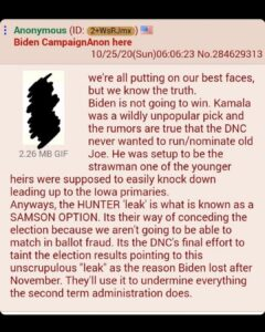 I've talked and theorized how I thought Biden seemed like a set up to take the f