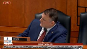 Rep. Cynthia A. Johnson accuses witness in Michigan State Senate Committee on Ov