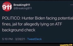 Read more about the article POLITICO: Hunter Biden facing potential fines, jail for allegedly lying on ATF b