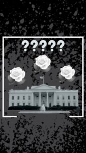 Read more about the article No observable activity at the Rose Garden despite the live news portraying much.