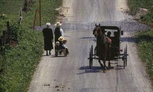 Read more about the article Amish community 'is the FIRST in US to achieve herd immunity to Covid'