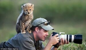 The only correct way to shoot an animal  Retweet if you agree