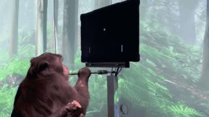 ICYMI – A monkey has been connected to Elon Musk's Neuralink device and trained