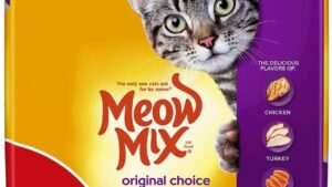 ALERT: Cat Food Sold In 8 States Recalled Due To Salmonella Concerns For Pets And Humans