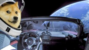 First rule of surviving a trip to the Moon: DON'T PANIC  #dogecoin #DogecoinRis