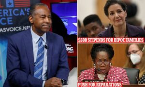 Ben Carson says the push for equity with reparations is 'un-American,' 'racist'