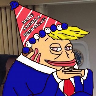 You are currently viewing NEW FREN ALERT BRUMF AKA BREB TRUMP