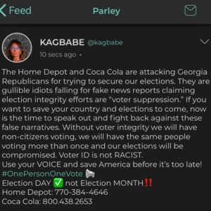 The  and  are attacking Georgia Republicans for trying to secure our elections.