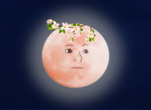 Great news: the Super Blood Flower Moon has arrived. The full Flower Moon is her
