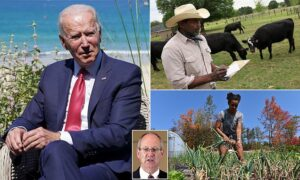 Judge halts Biden's 'unconstitutional' $4BN program to pay up to 120% of black,