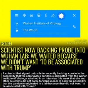 """Scientists did not come forward sooner to back the Wuhan lab theory because """"at"""