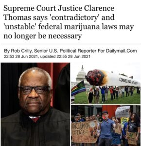 """Read more about the article """"My my it's been such a long time federal marijuana laws"""""""