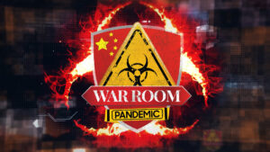 Read more about the article Episode 1,075 – Fact Checker Gets War Room Struggle Session – Steve Bannon's War Room: Pandemic