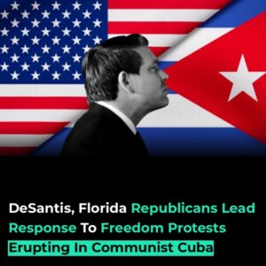 Read more about the article Florida Republicans were among the most vocal proponents of the freedom protests