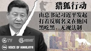 """Read more about the article [Topple CCP] CCP's Overseas """"Operation Fox Hunt"""" for Political Dissidents – GNEWS"""