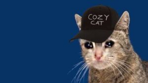 Read more about the article How could people even exist that are aware of such a cozy cat's existence and ye
