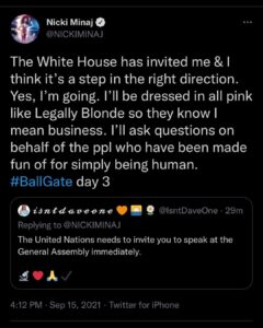 Read more about the article WHITE HOUSE TINGZ