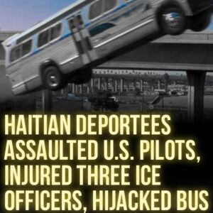 Read more about the article NBC News & Free Beacon:  Haitians deported from the U.S. on Tuesday assaulted th