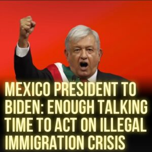Read more about the article Al Arabiya:  Mexican President Andres Manuel Lopez Obrador urged the United Stat