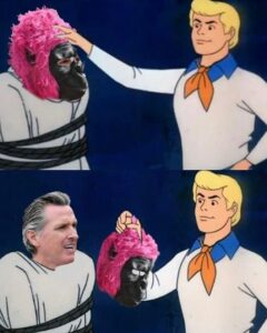 Read more about the article Recall gavin newsom