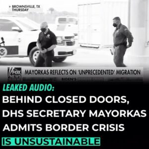 """Read more about the article Biden DHS Secretary Alejandro Mayorkas on the border crisis in leaked audio: """"Th"""