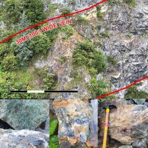 Read more about the article Blackwolf Copper and Gold Identifies Significant Vein Targets at Cantoo Property